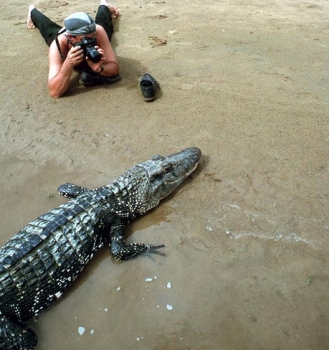 ...who want to experience something new: photo session with black caiman