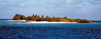 National parc island: Petit Tabac, pearl of the Tobago Cays, is strictly protected.