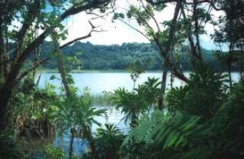 Surrounded by dense jungle and old myths woven araound it: the Grand Etang crater lake