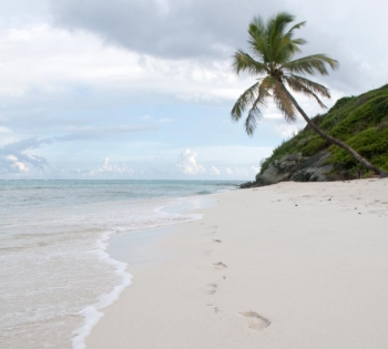 Every day another picture book beach: the Tobago Cays