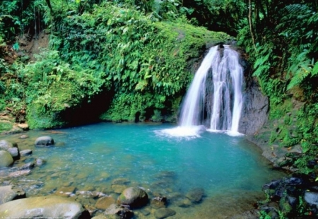 Basse Terre: Waterfall